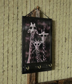 Load image into Gallery viewer, Funny-Giraffes-Wall-Key-Rack-Nchanted-Gifts
