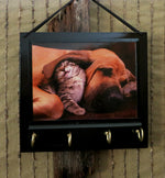 Load image into Gallery viewer, Cat-Dog-Key-Hanger-Best-Friend-Gift-Nchanted-Gifts