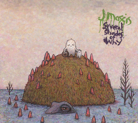 J Mascis - Several Shades Of Why (Gatefold LP)