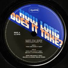 "Mildlife - How Long Does It Take? (12"")"