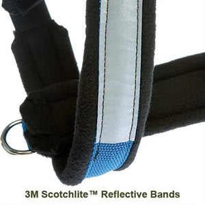 Safety First Seat Belt Restraint™ / Urban Trail® Adjustable Harness Combo