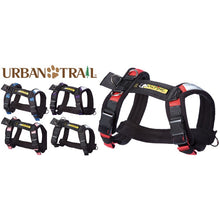 Load image into Gallery viewer, Safety First Seat Belt Restraint™ / Urban Trail® Adjustable Harness Combo