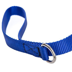 Limited Slip Collar / Walking Leash  Combo