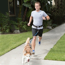 Load image into Gallery viewer, Urban Trail® Hands Free Belt and Jogger's Leash Combo