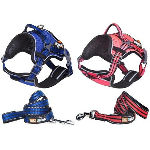Dog Chest Compression Pet Harness and Leash Combo