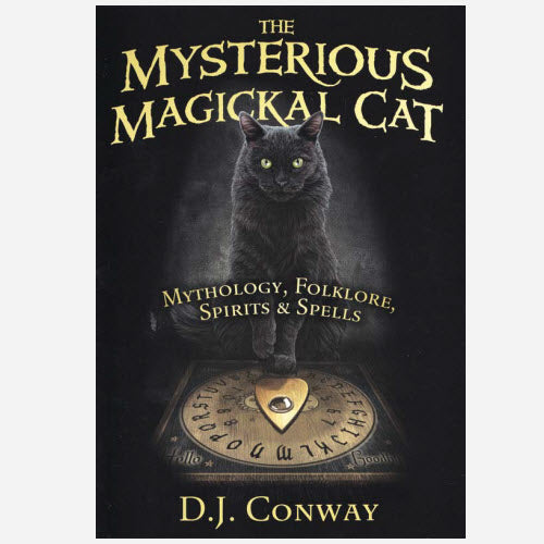 Mysterious Magickal Cat