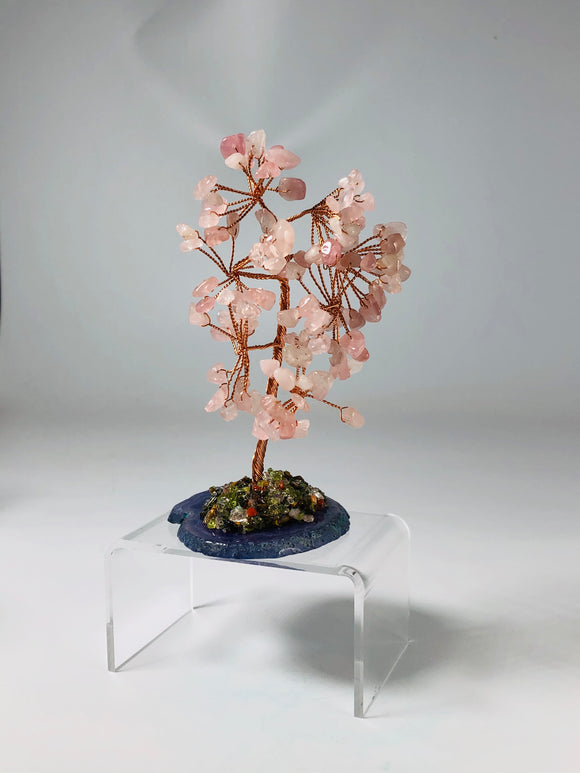 Rose Quartz Tree of Life Tree Agate Base