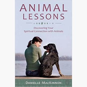 Animal Lessons Books Mystical Moons