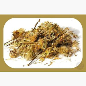 Arnica Herbs Mystical Moons