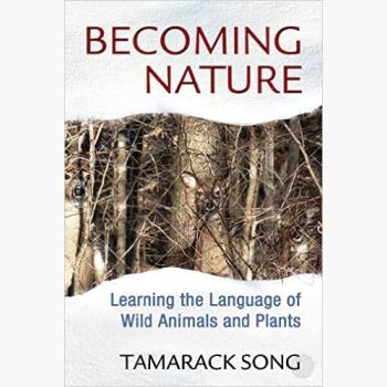 Becoming Nature Books Mystical Moons