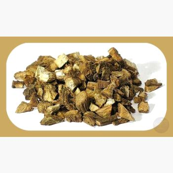 Burdock Root Herbs Mystical Moons
