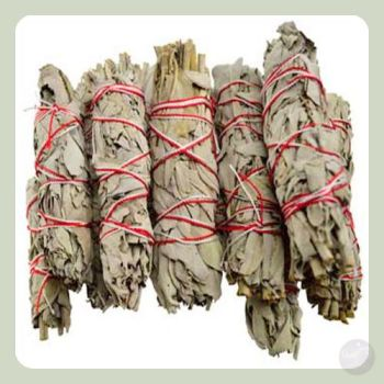 California White Sage Smudge Sticks Stick Mystical Moons