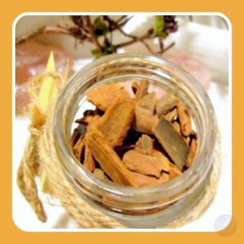 Cinnamon Cut Herbs Mystical Moons