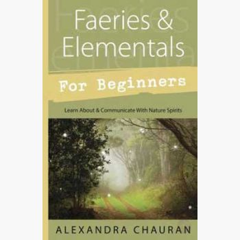 Faeries & Elementals For Beginners Books Mystical Moons