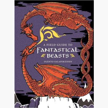 Field Guide To Fantasical Beasts Books Mystical Moons
