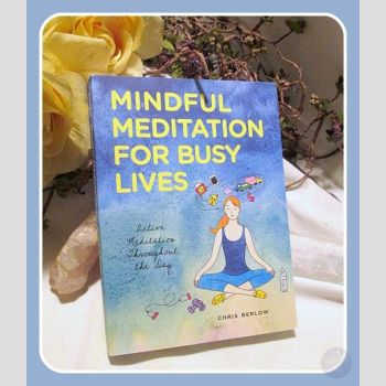 Mindful Meditation For Busy Lives Books Mystical Moons