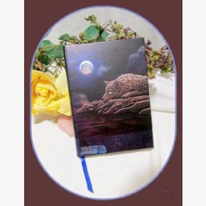 Quiet Reflection Journal Mystical Moons
