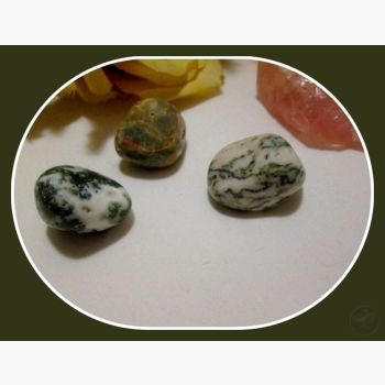 The Stone Of Plenitude Green Tree Agate Set Sets Mystical Moons