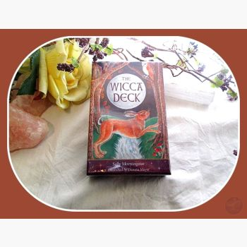 Wicca Tarot Deck Set Cards Mystical Moons