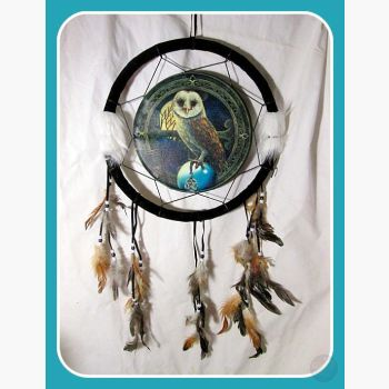 Wise Owl Dream Catcher Dreamcatcher Mystical Moons