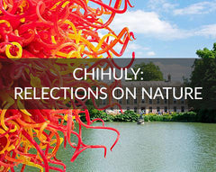Chihuly: Reflections on nature, Kew Gardens
