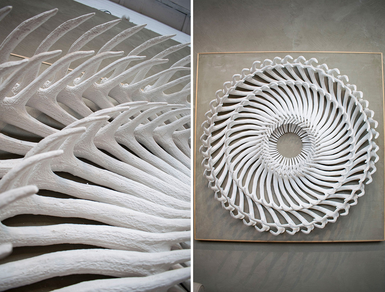 Cox London Bone Art Wall Sculpture