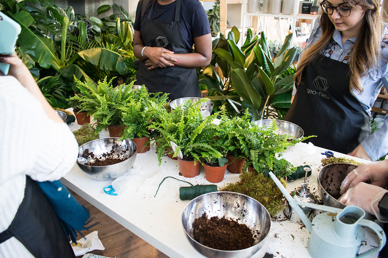 plant workshop at geo-fleur London