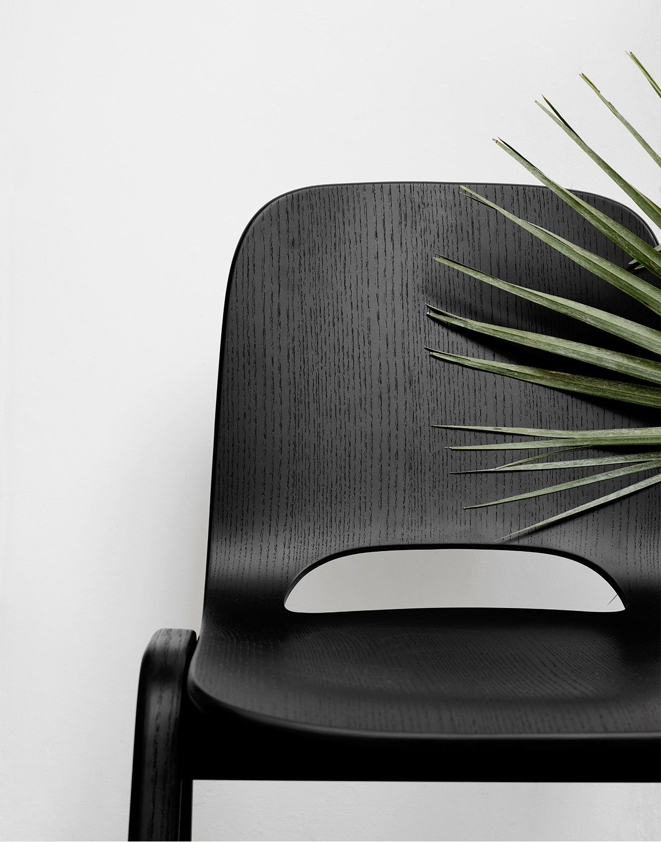 Hem black wooden chair with palm from display