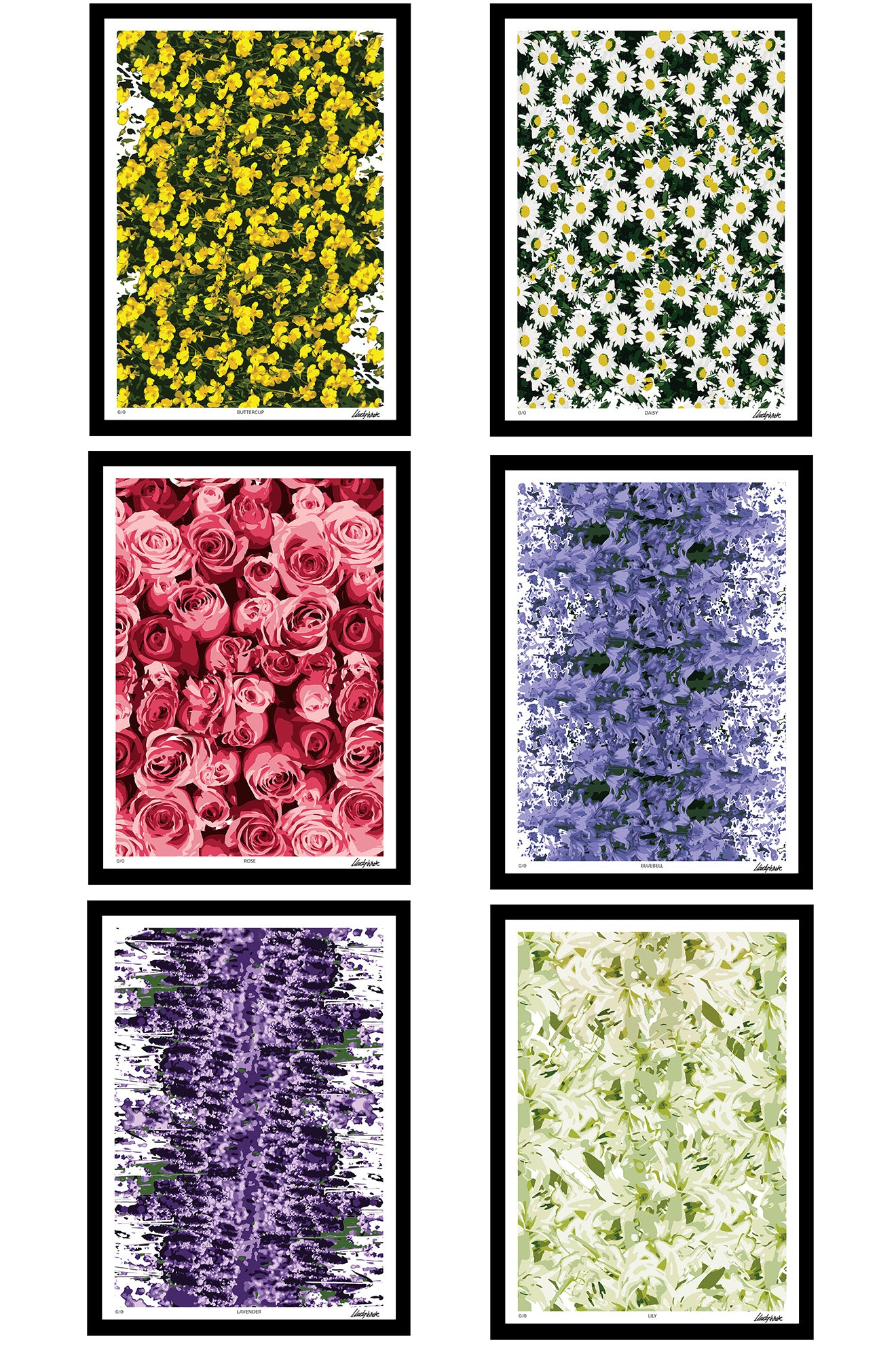 Floral collection of abstract art prints from Martyn White Designs