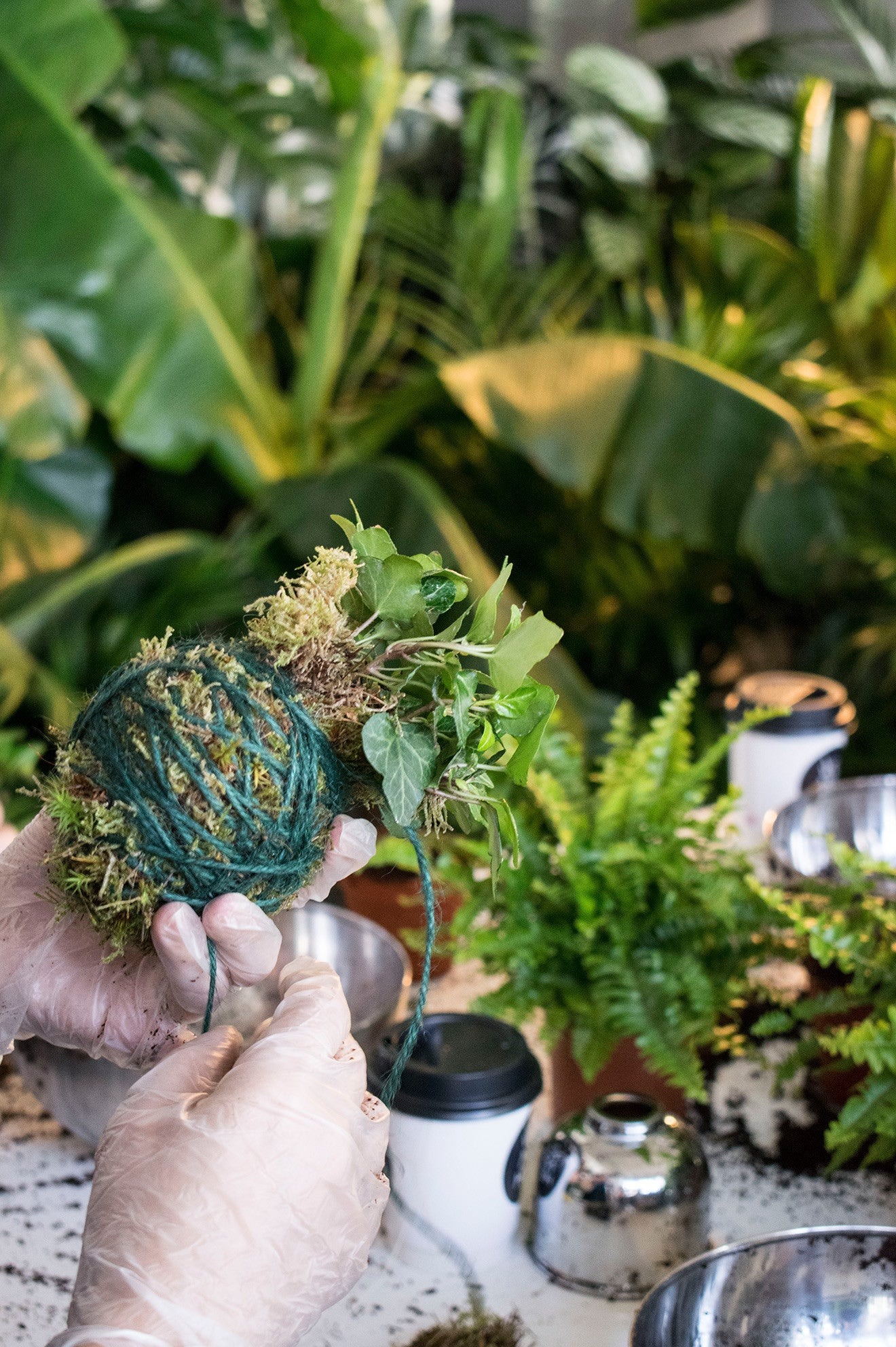 creating a kokedama at geo-fleur with ivy
