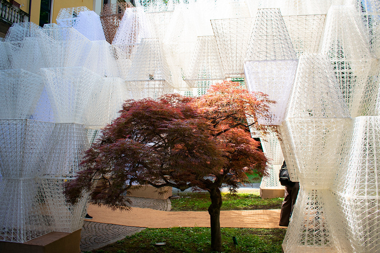 COS collaborates with Mamou Mani to create the Conifera installation at this years Milan Design Week