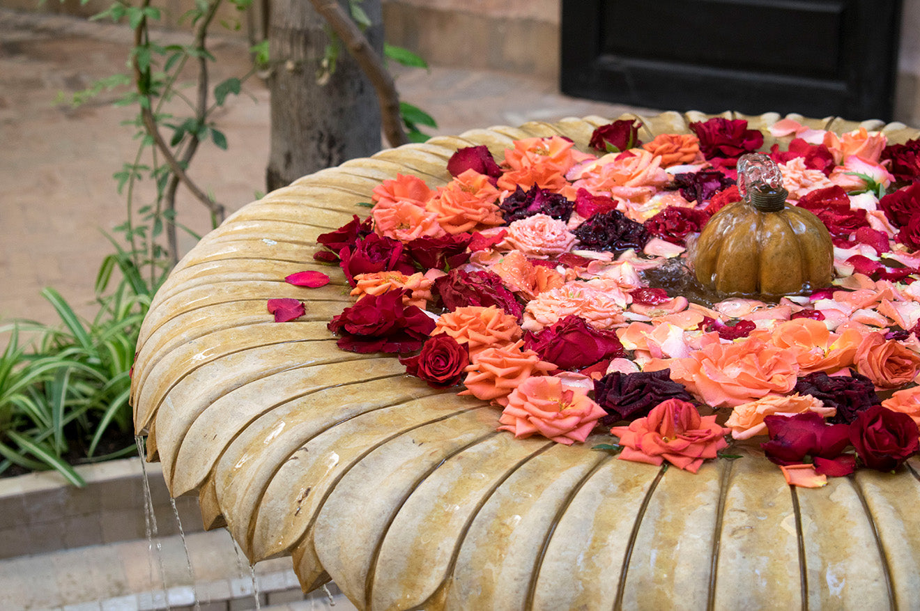 Moroccan fountain filled with red roses in Marrakech