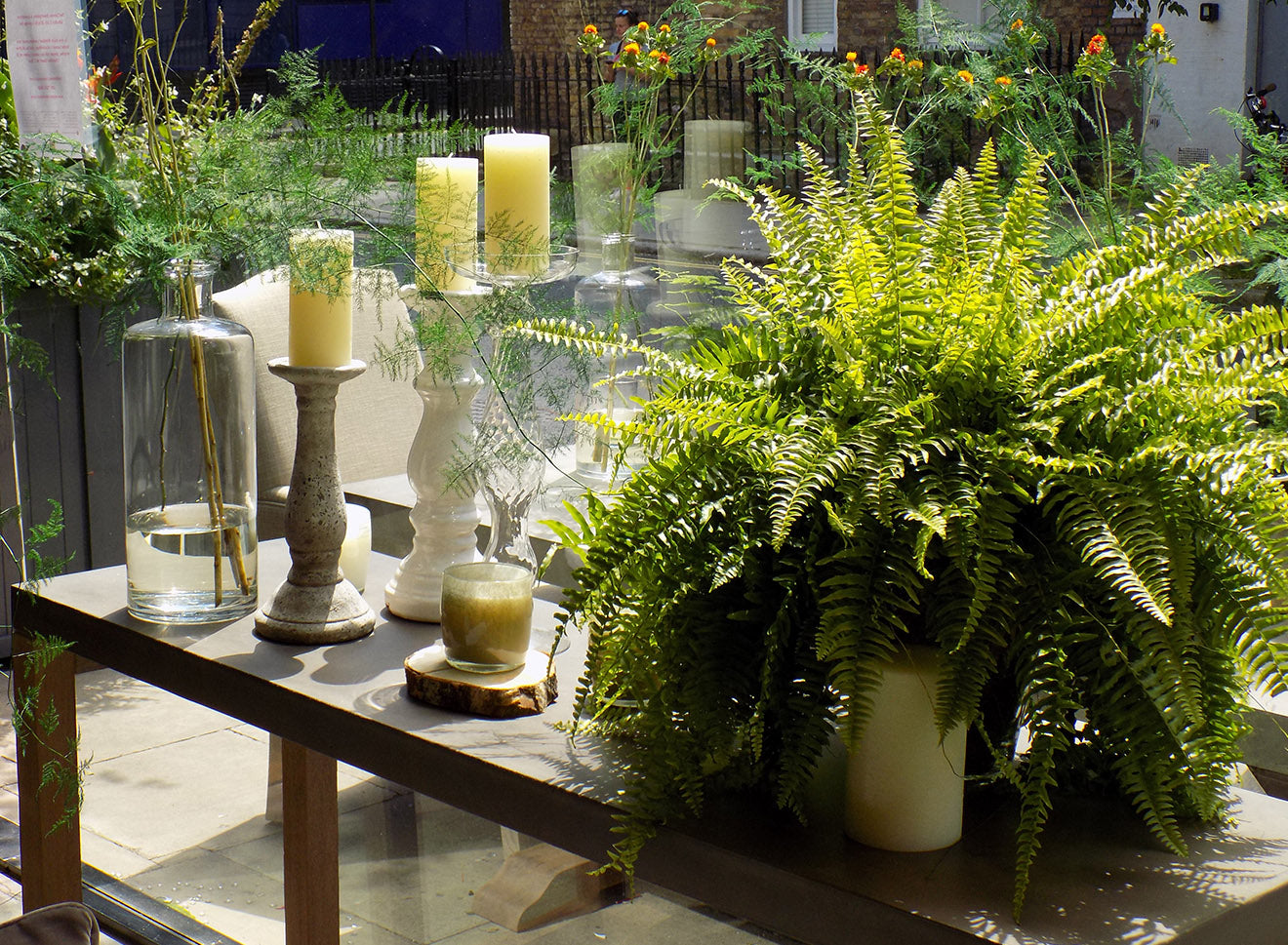 Neptune Home London display with house plants ferns and candle sticks