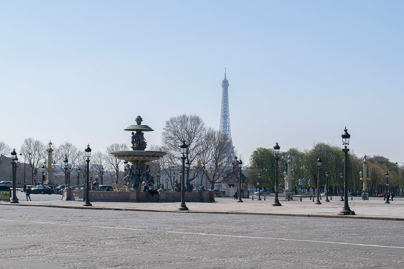 View of the Eiffel Tower from afar in Paris