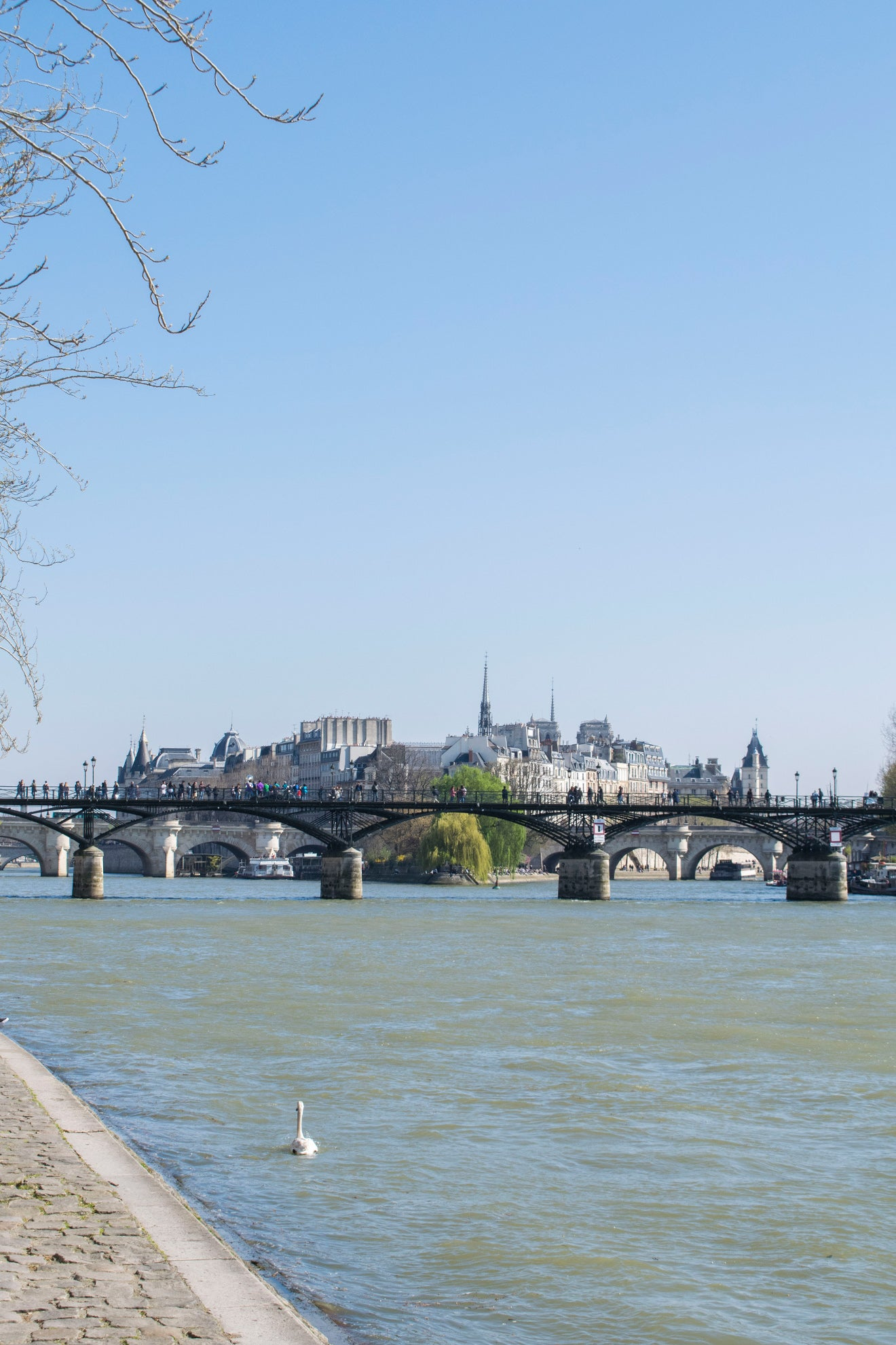 Views up the Seine across Pont Neuf and Place Dauphine in Paris