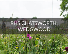 RHS Chatsworth House Wedgwood Garden