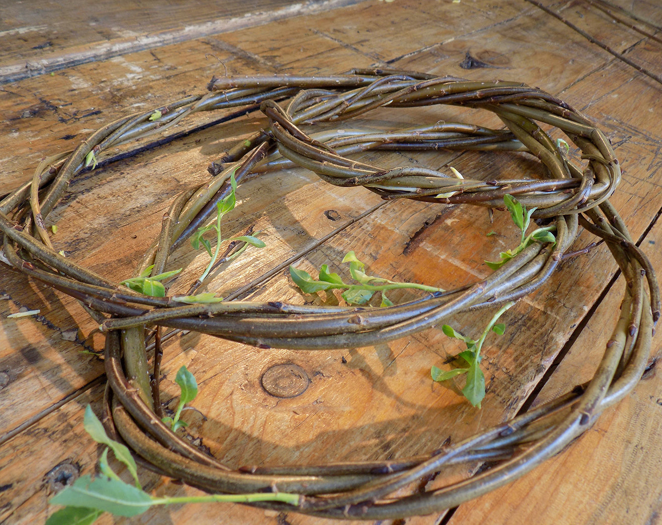 Willow circles to create a sculpture