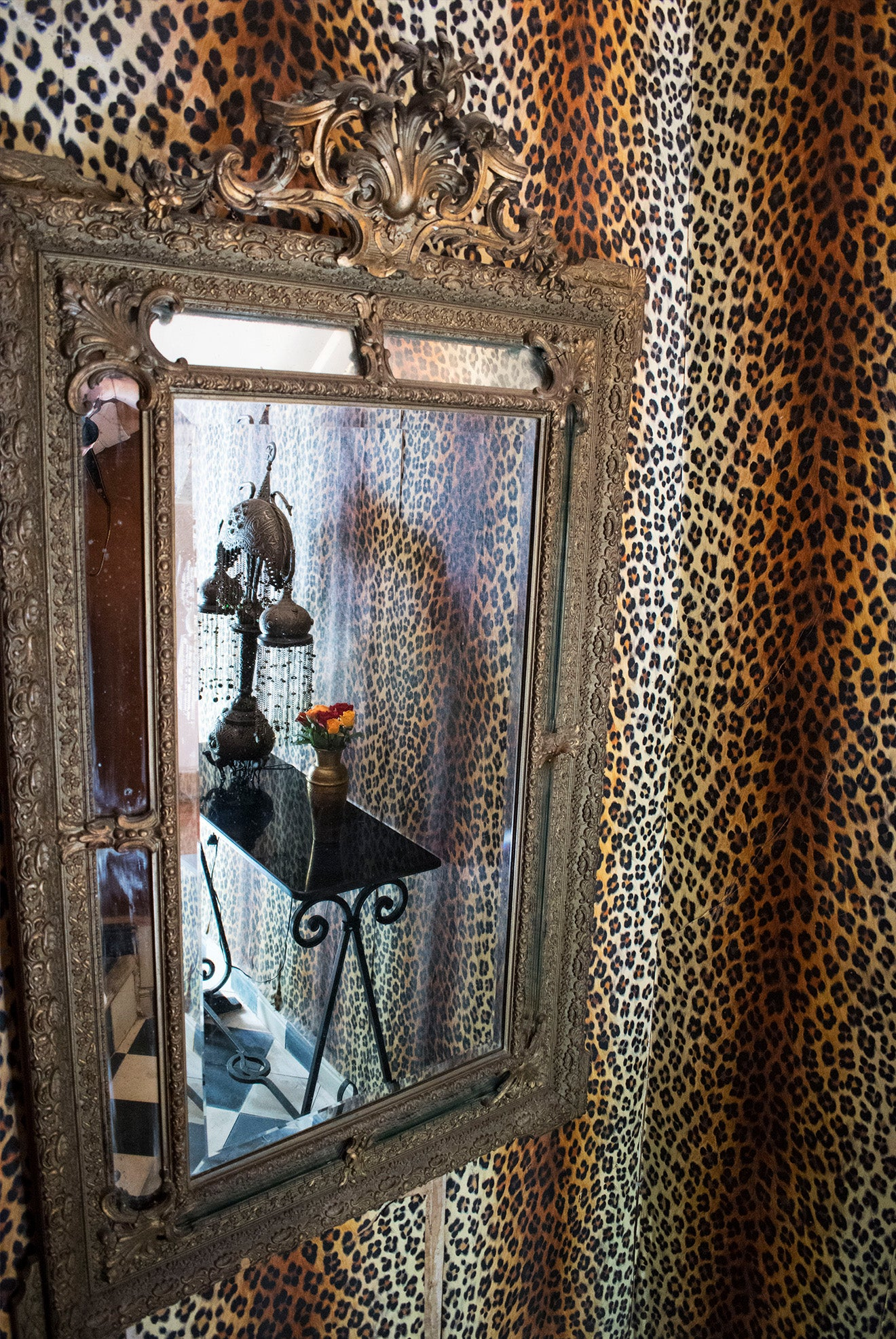 Dar Jaguar hotel design with Leopard print wallpaper