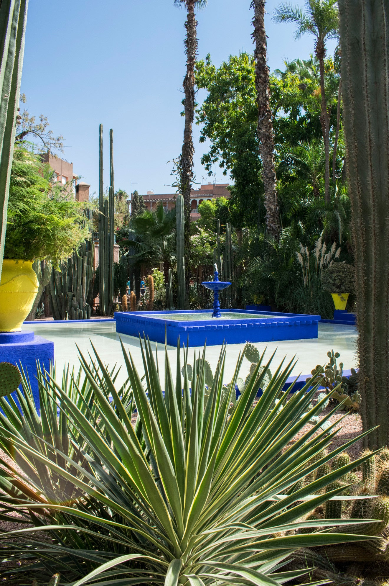 Visiting the YSL gardens in Marrakech with the blue fountain