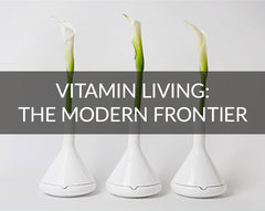 Vitamin Living Design Blog