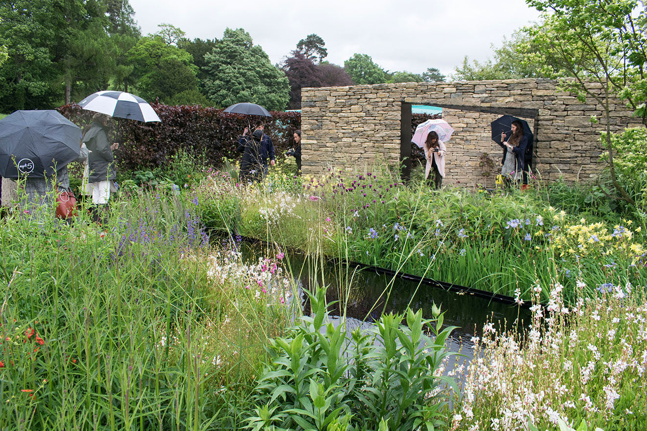 Wedgwood garden at Chatsworth Flower Show