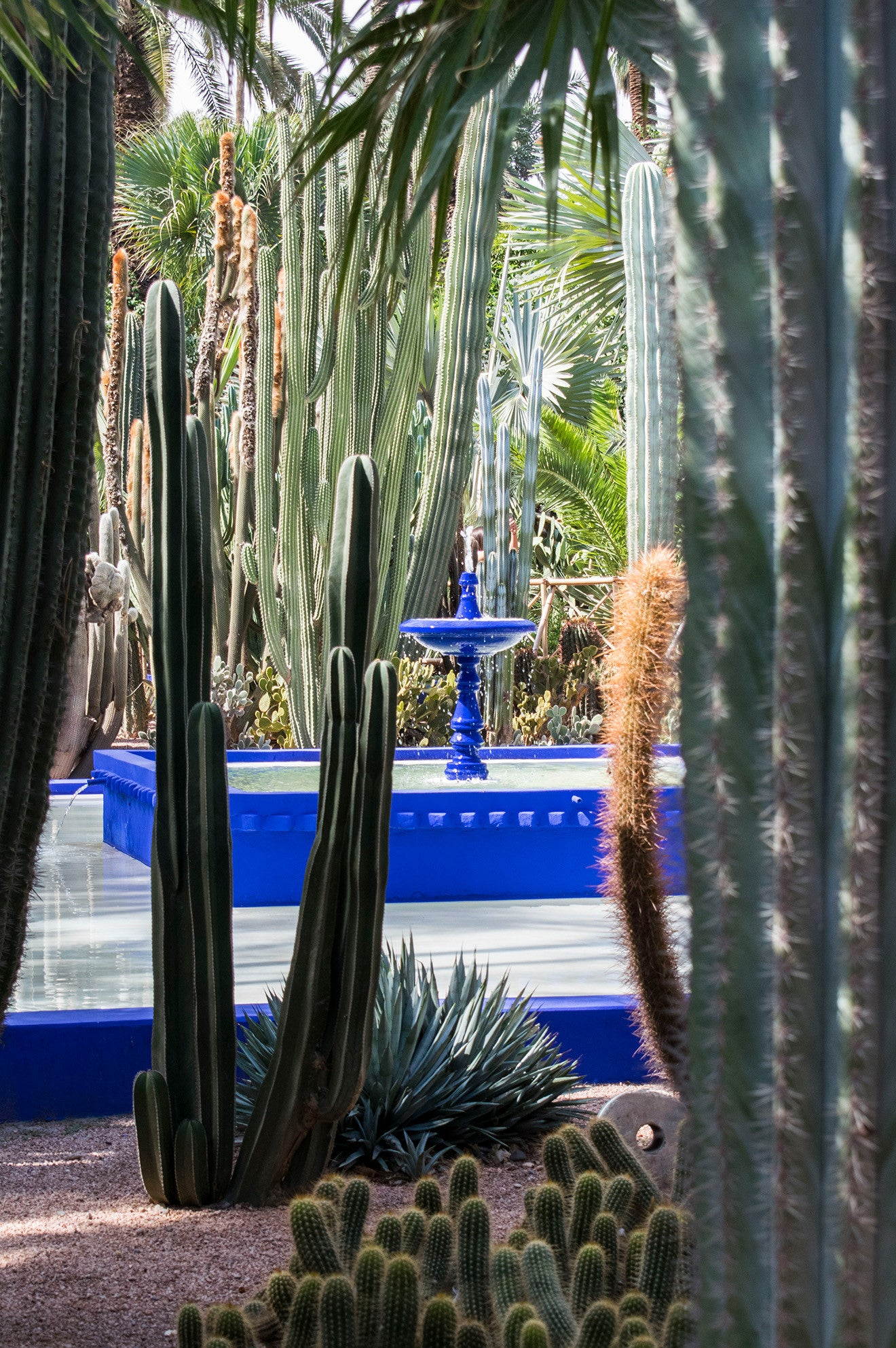 YSL Gardens blue fountain Marrakech Morocco