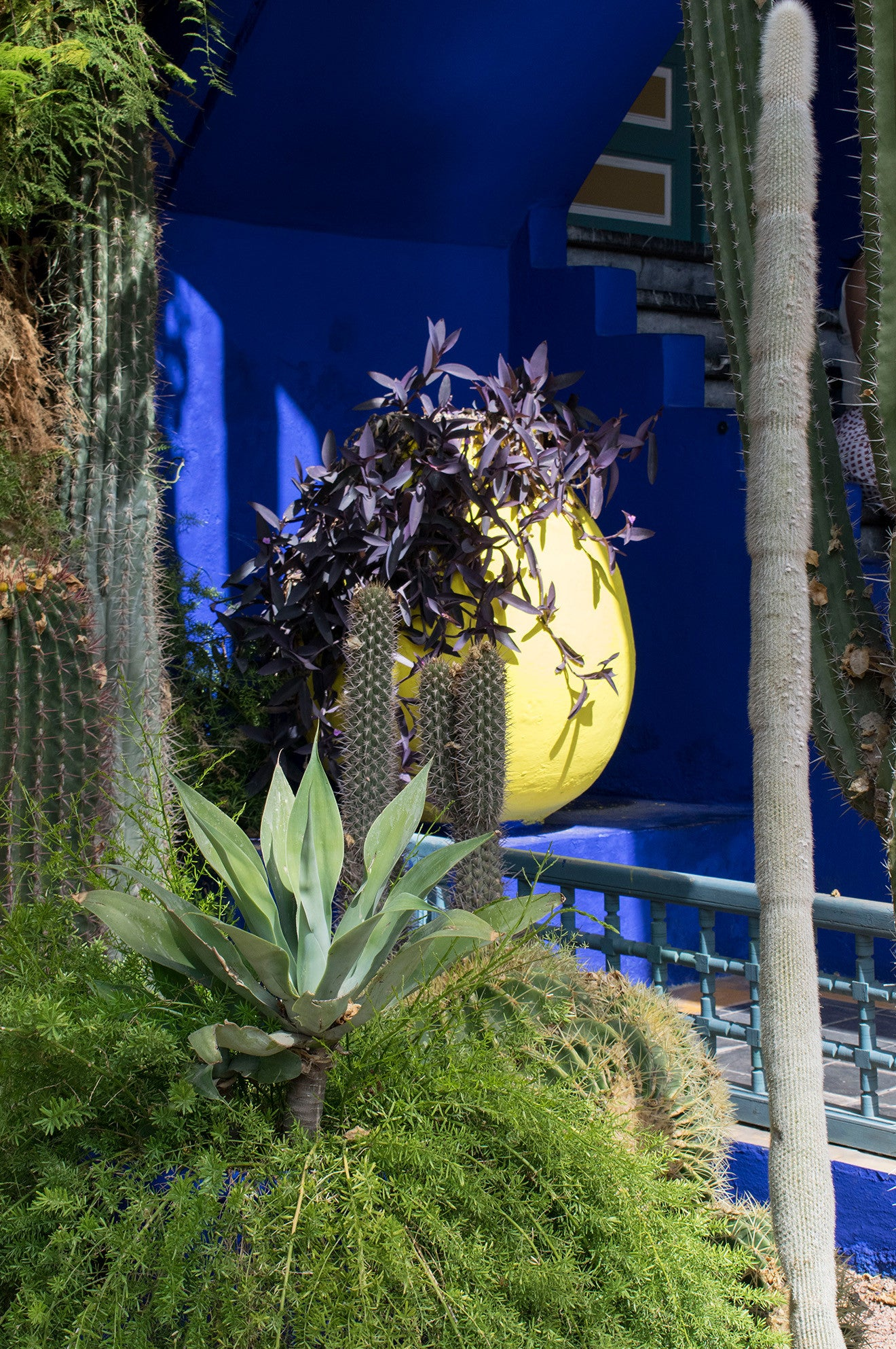 Yellow Egg planter at the YSL Gardens Marrakech