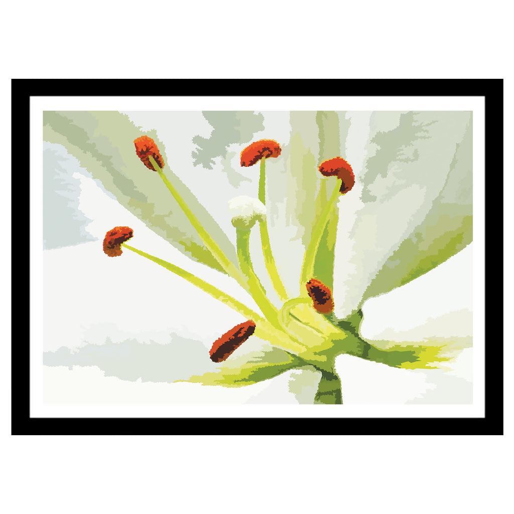 Abstract flower artwork white Lily art print