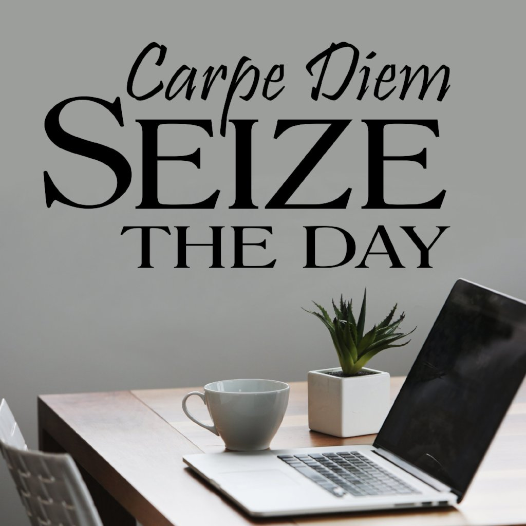 Seize the Day Carpe Diem | Office Decal | Vinyl Wall Quotes