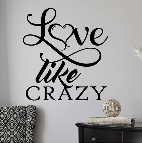 Love Like Crazy | Romantic Vinyl Decal | Wall Lettering