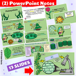 Photosynthesis Doodle Notes, PowerPoint, & Warm Ups
