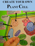 Plant Cell Organelle Cut and Paste