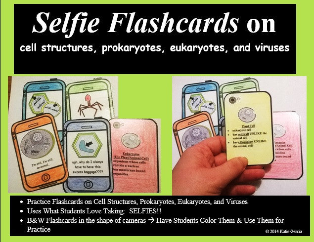 Cell Organelles Flashcards