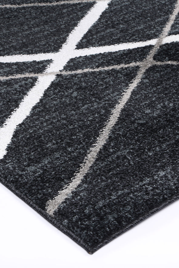 Paisley Abstract Stripe Charcoal Rug